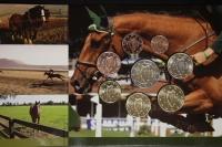 Kursmünzensatz 2010 Irland